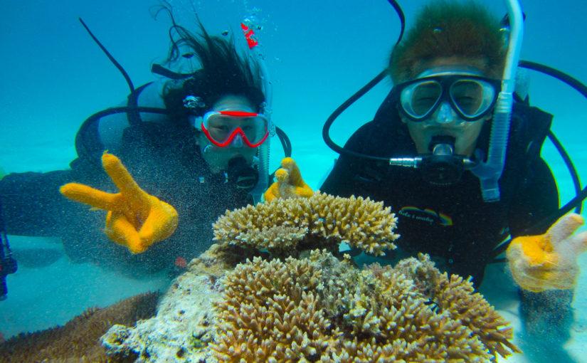 小浜島での体験ダイビング