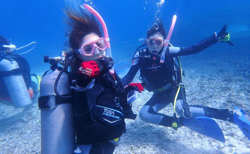 小浜島体験ダイビング