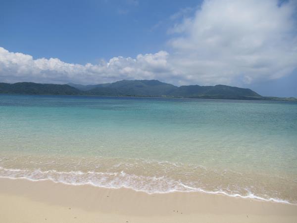細崎海岸の透明度の高い海