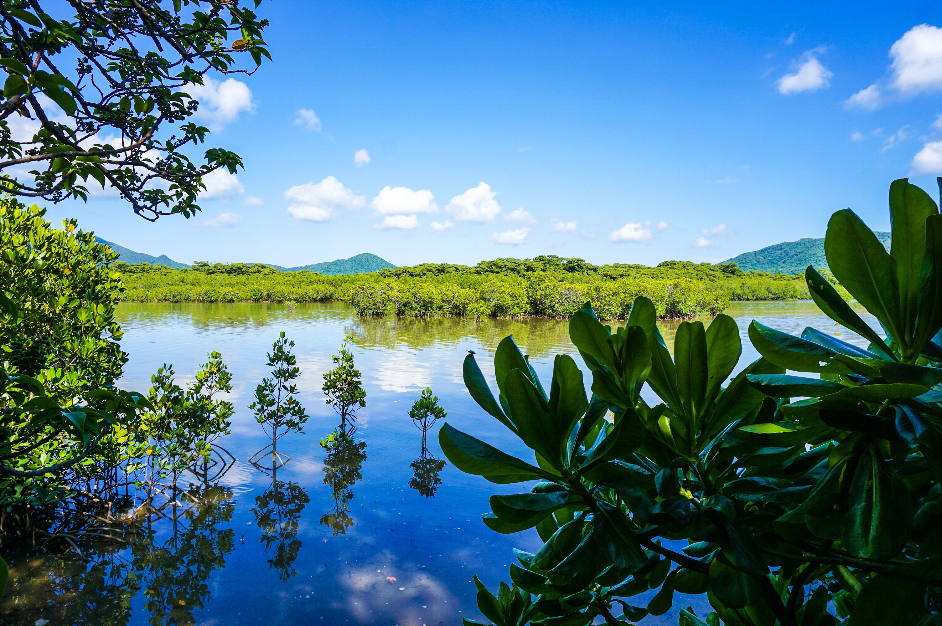 マングローブカヌーにおすすめの石長田海岸